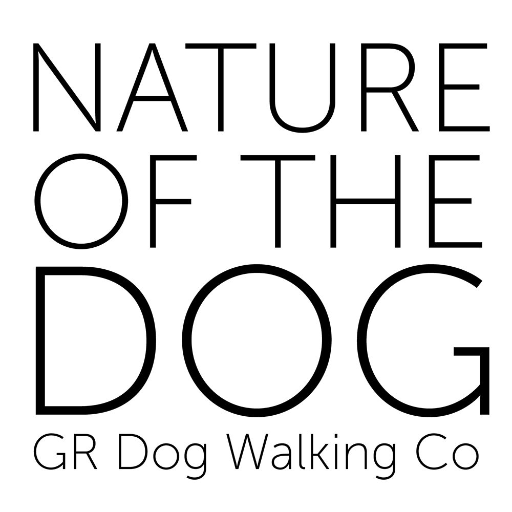 Nature of the Dog