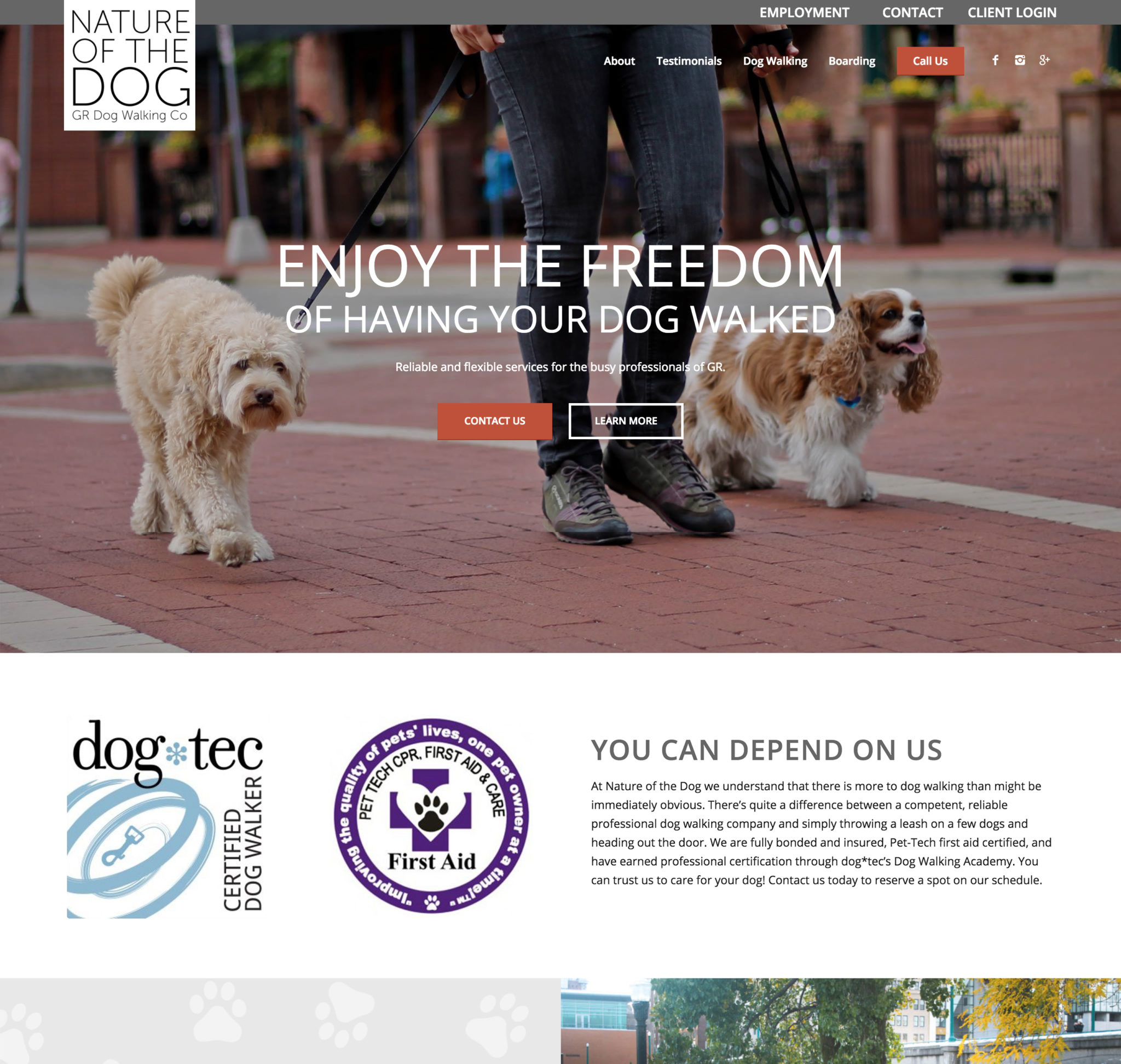 Nature Of The Dog Grand Rapids Dog Walking Boarding Daycare